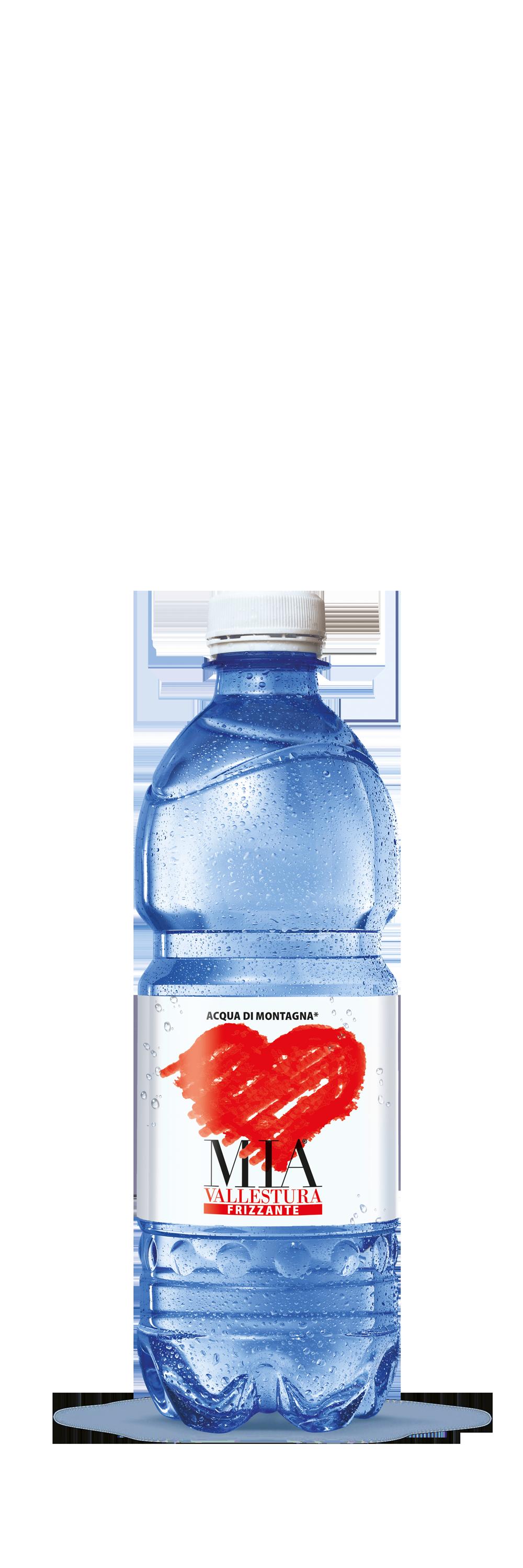 Acqua Mia Vallestura - Frizzante 0,5l