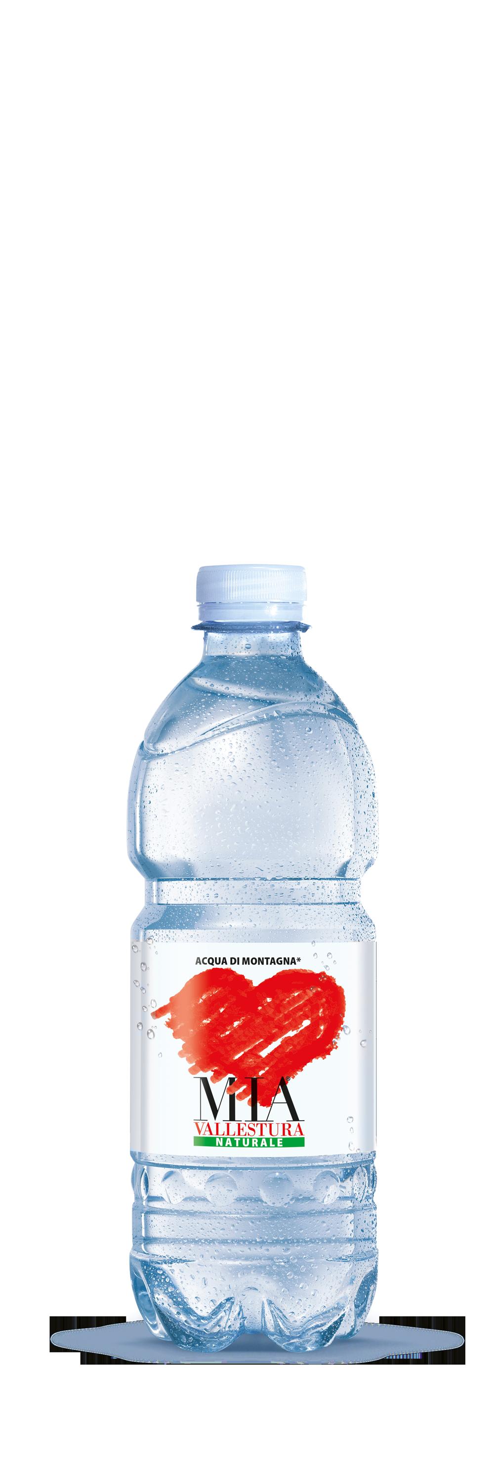 Acqua Mia Vallestura - Naturale 0,5l