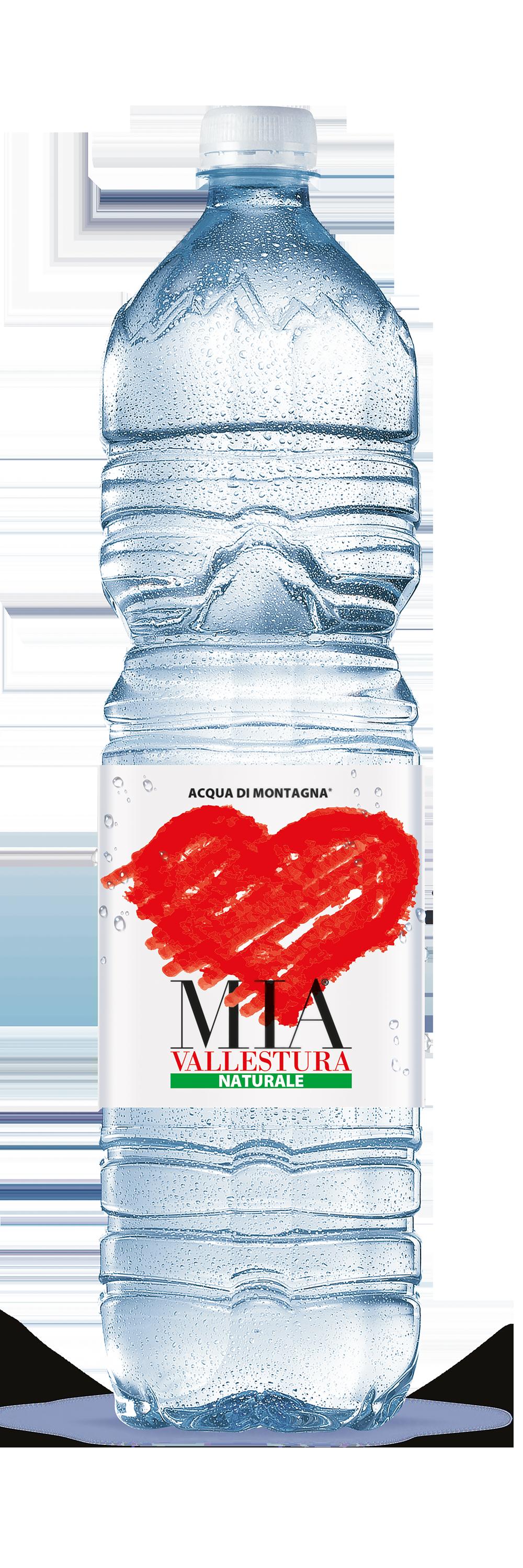 Acqua Mia Vallestura - Naturale 1,5l